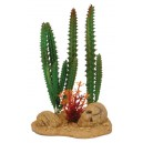Reptile Cactus on Rock Base