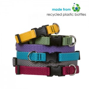 "Lupine ECO 1/2"" Dog Collars- Jasminespetshop.co.uk"