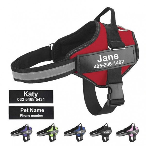PERSONALIZED NO-PULL DOG HARNESS