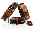 Premium Dog Collar With Tara