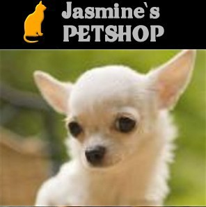 JASMINES ONLINE PET SHOP